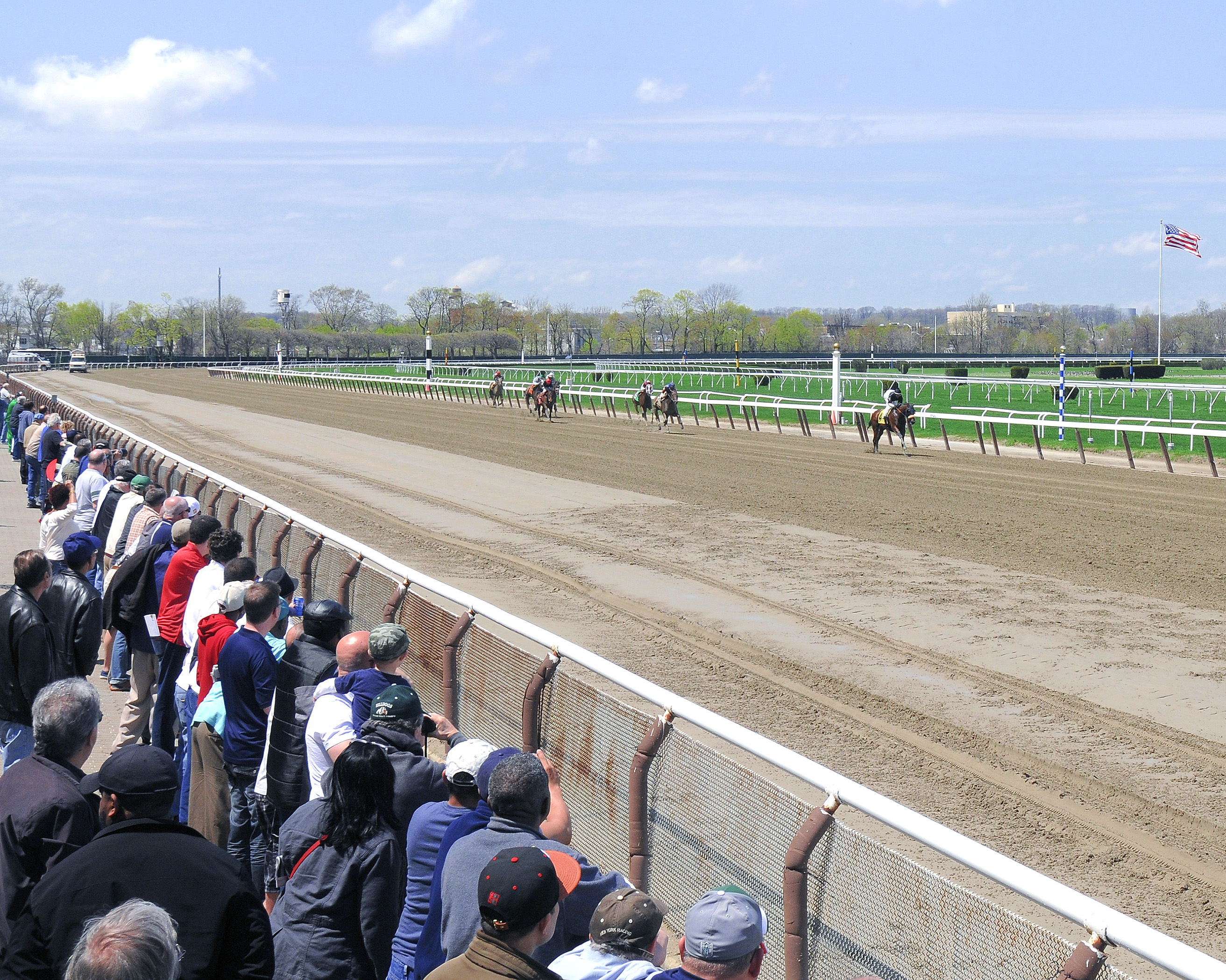June 7 belmont stakes is a month away yet thoroughbred horse racing