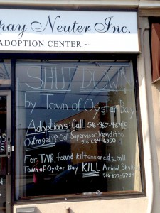 The owner of All About Spay Neuter Inc. says the store was unfairly shut down.