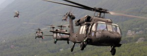Black Hawks: What brings them to the neighborhood? The answer is surprising.