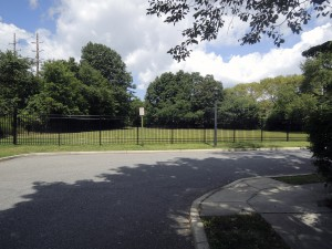 Part of the privately-owned Franklin Court property is a fenced-in dog run referred to as such in the letter sent to prospective members of the Franklin Court Mews, LLC (Photos by Dave Gil de Rubio)