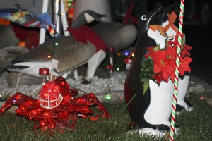 A festive red lobster lights up the front yard.