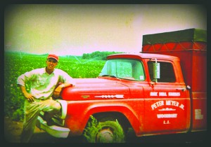 Meyers Farm Dad, Peter J. Meyer III mid 1960's second farming location shifted from Dix Hills to Calverton