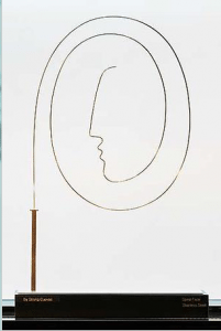 """""""Spiral Face"""" by Elizabeth Strong-Cuevas of Amagansett with Leonard Tourne Gallery, Stainless steel, 32 x 24 x 8, 2005"""