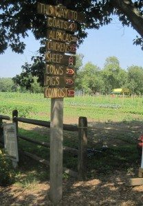 Queens County Farm (Photo by Christy Hinko)