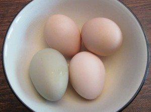 Pitchayan chicken eggsb