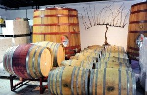 Bedell Wineries aging room (Photos by Tab Hauser)