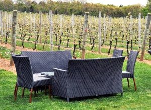 Picnic tables amongst the vineyards