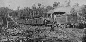 Sugarcane railroad circa 1915: the sugarcane, land and railroad were all owned by U.S. banks