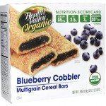 SNACKS Healthy Valley Organic Blueberry Cobbler Multigrain Cereal Bars