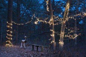 Bayvlle Adventure Park's Winter Wonderland