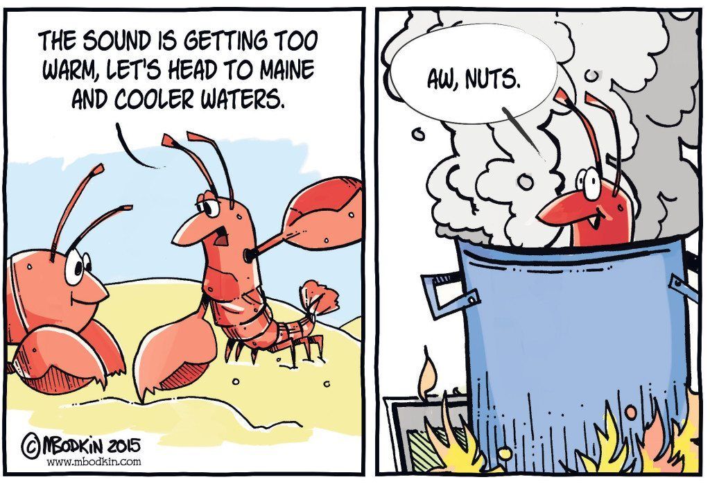 Warm Long Island Sound Lobsters cartoon