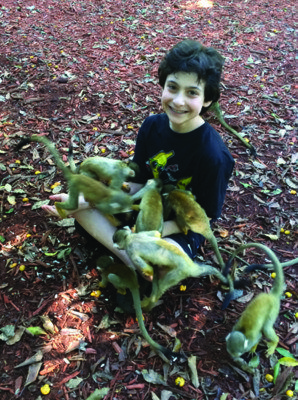 Family activities southern Florida At Monkey Jungle's Rainforest Adventure Tour, guests interact with squirrel monkeys.