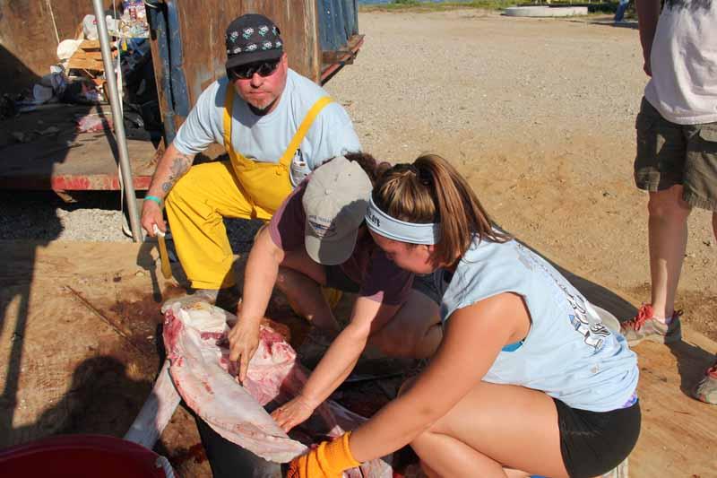 Frank Barrella (left) assists biologist Nancy Kohler and his daughter Frances before dressing the fish for donation.