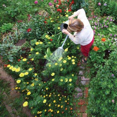 Gardening_A