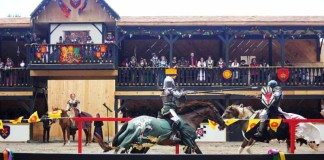 New York Renaissance Faire jousting Photo by Kimberly DIjkstra