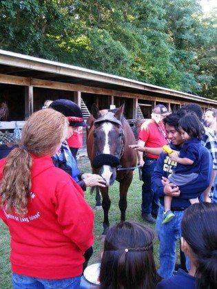 Families petting horseLong Island Fair Gallery Photo by Kimberly Dijkstra