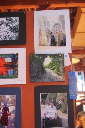 Photo competition Long Island Fair Gallery Photo by Kimberly Dijkstra