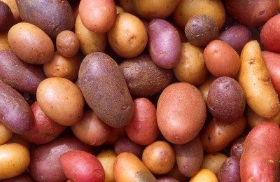Peru is home to many varieties of the humble potato.