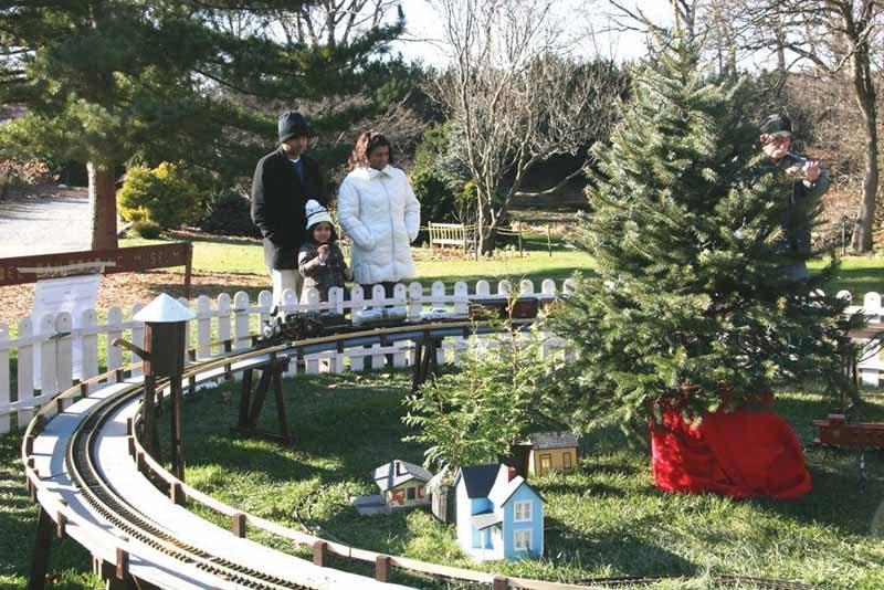Winter Wonderland At Clark Botanic Garden Long Island Weekly