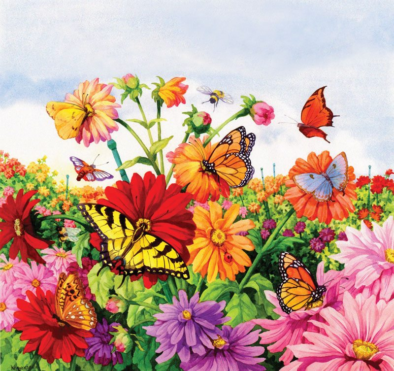 Blossoms and Butterflies by Nancy Wernersbach