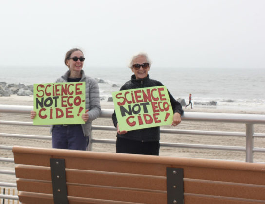 Long Island Climate March Photo by Kimberly Dijkstra